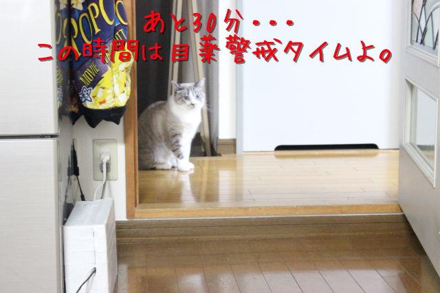 kako-kllN3nP7aFNNQQ0X.jpg