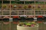 flowerpark-08.jpg