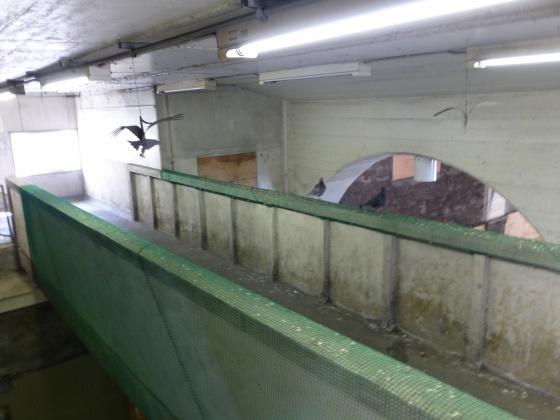 JR国道駅293