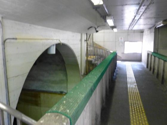 JR国道駅294