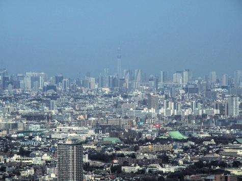東京スカイツリー(横浜ランドマークタワーより) HDR