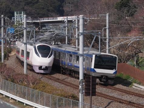 E657系 電車 特急「フレッシュひたち28号」