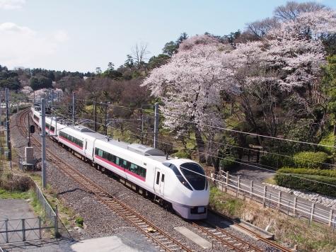 E657系 電車 特急「スーパーひたち27号」