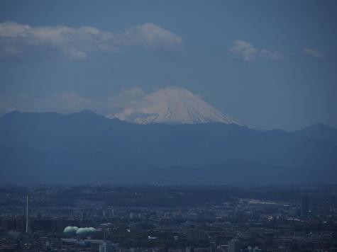 東京都庁からの富士山