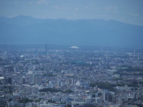 スカイタワー西東京&西武ドーム【東京都庁より】