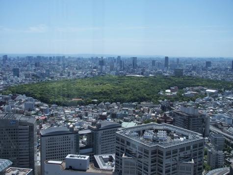 明治神宮・代々木公園【東京都庁より】
