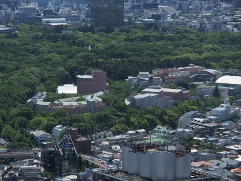 国立オリンピック記念青少年総合センター【東京都庁より】