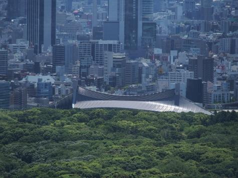 代々木第一体育館【東京都庁より】
