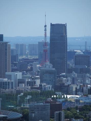 東京ミッドタウン・タワー越しの東京タワー【東京都庁より】