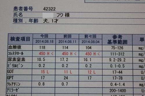 IMG_4728_R.jpg