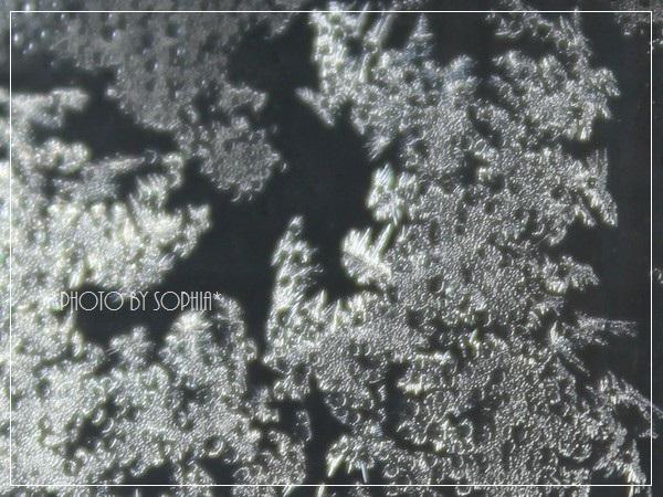 氷と水滴のコラボ