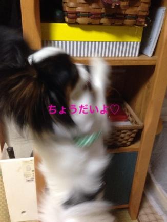 fc2blog_2014051721213025f.jpg