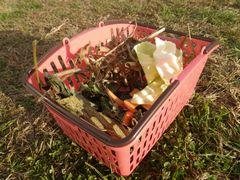 [写真]アランへの餌やりカゴ(中には、大豆の葉や豆殻、ニンジン、キャベツ)