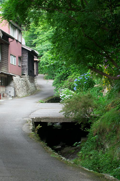 花沢の里 初夏 1