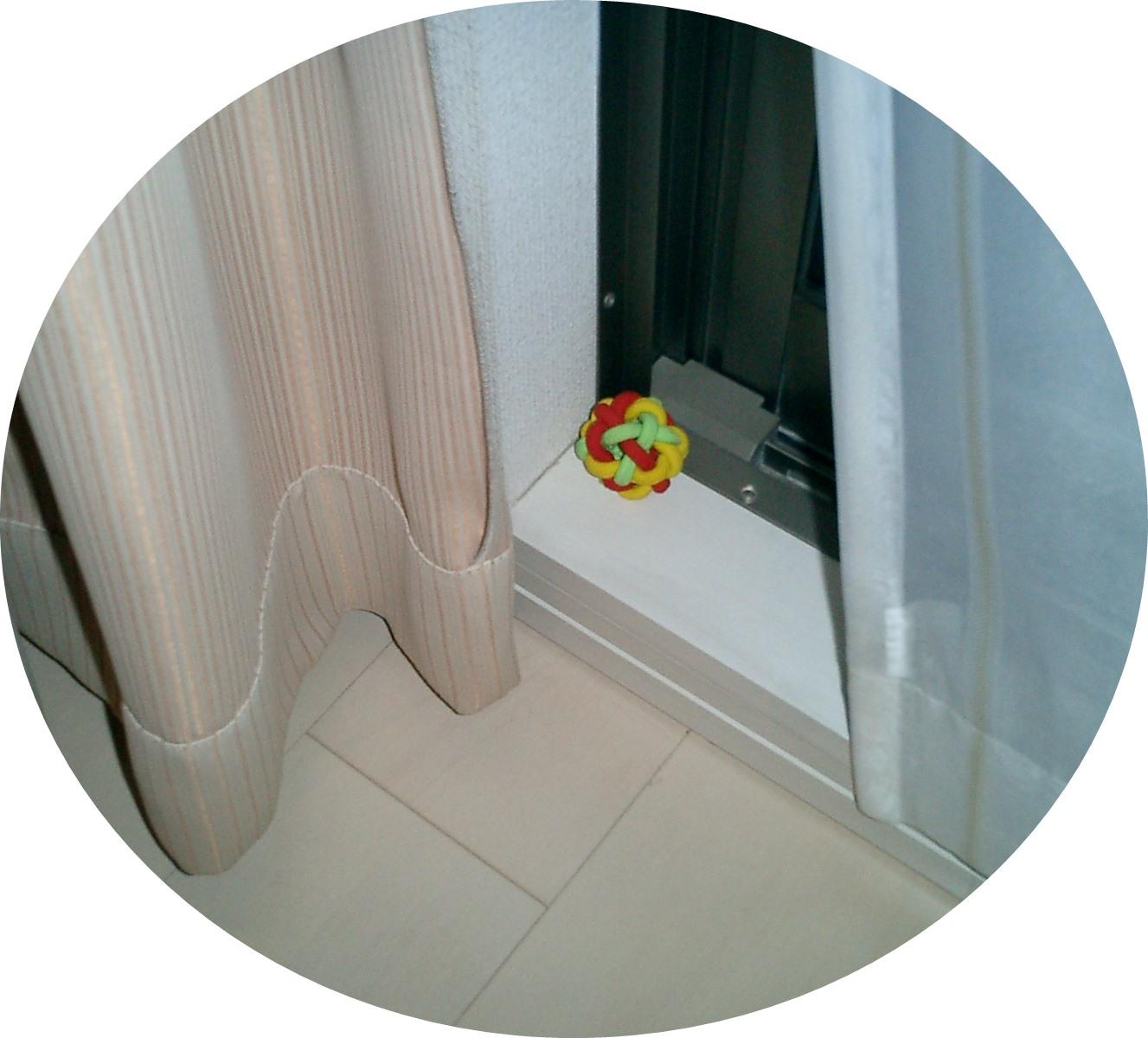 CIMG0156.jpg