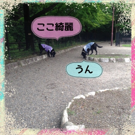 fc2blog_201405311526128b1.jpg