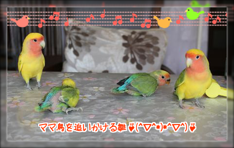 201403241635206ce.png