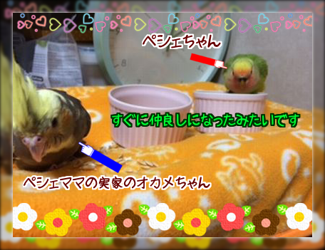 2014040919043302a.png