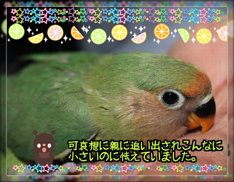 20140413223653ae6.png