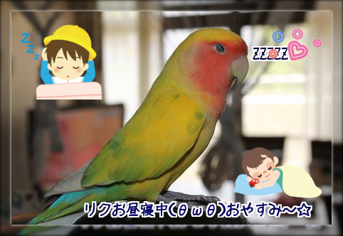 201404152241309ae.png