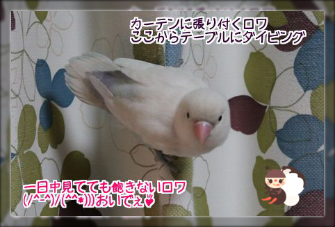 20140420210007257.png