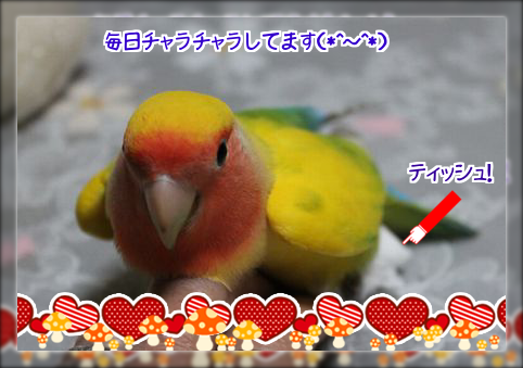 2014042021000956c.png