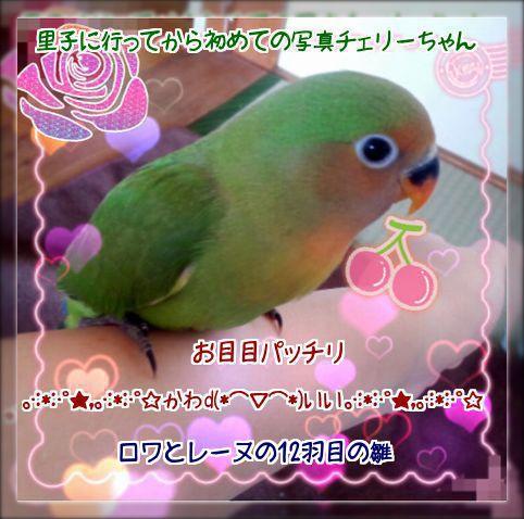 201404301436367f8.jpg