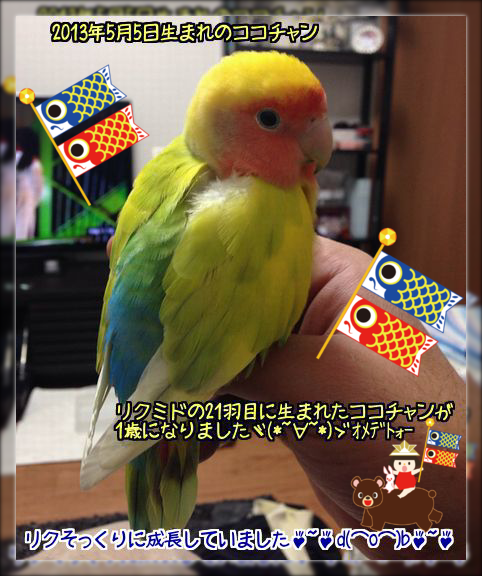 20140506223639f95.png