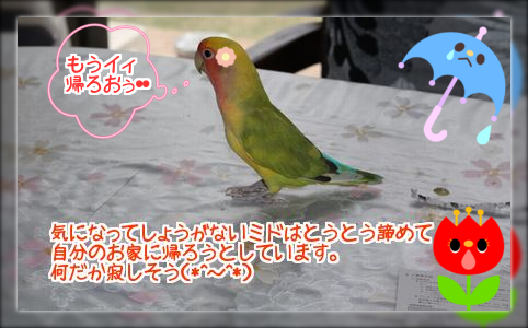 20140530234000b3a.png