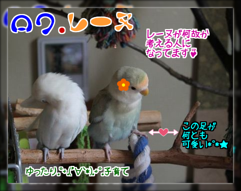 201406201911430f5.png