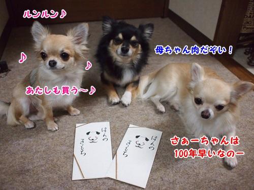 PC080015.jpg