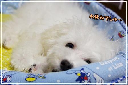 良く寝て!!