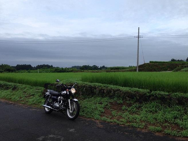 20140720_5.jpg