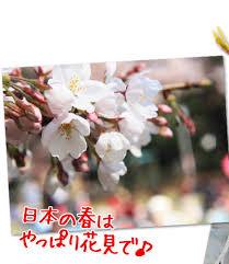 images63QUM21I.jpg