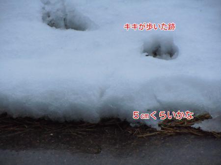 nHC7c6abvY2pKLk1392472837_1392472928.jpg