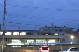 b_koiiro_p_1161.jpeg