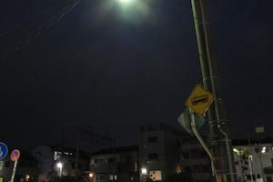 b_koiiro_p_1171.jpeg