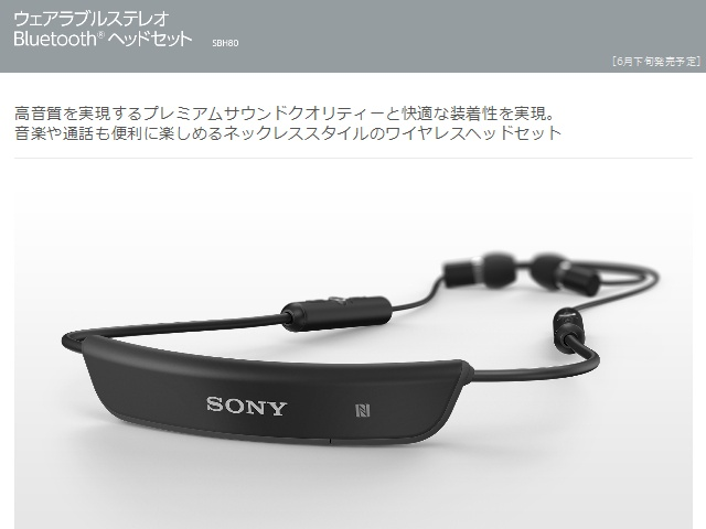SBH80_11.jpg